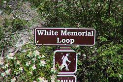 White Memorial Loop