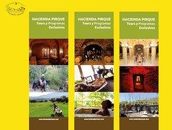 Programas Exclusivos de Patrimonio y Tradiciones Chilenas