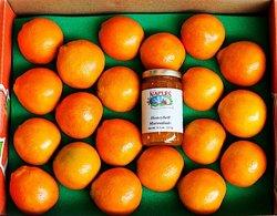 South Naples Citrus