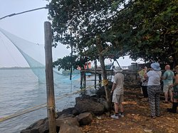 Chinese Fishing Nets in Fort Kochi !  Fort Kochi Tuk Tuk Tours , Fort Kochi Tours, Kochi Tuk Tuk tours, Kochi Private Guided Tuk Tuk Tour with Cruise Port Pickup, Fort Kochi Tuk Tuk tour with Eranakulam warf pick up, Tuk Tuk Tour with Port Pickup, KOCHI Tuk-tuk tours with Pickup from Cruise Ship, Best things to do in Fort Kochi, Best Activities in Fort Kochi