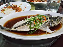 Fresh steamed fish. This was quite good.