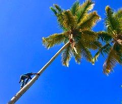 Beautiful Javo Beach