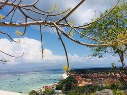 島内観光の際の丘の上からの景色