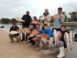 Snapper Fishing with Reel Time Fishing Melbourne Dec 2019