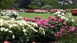 2. Victoria Esplanade Gardens