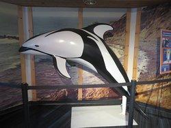 Marineland Exhhibit, Point Vicente Interpretive Center, Rancho Palos Verdes