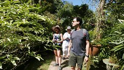 Customised private tour for our American guests