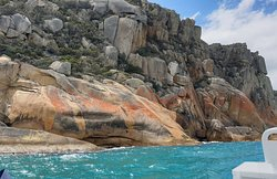 Stunning and remote granite coast on the eastern side of Maria Island.  The contrast of colours here is amazing!