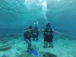 Dive whit family
