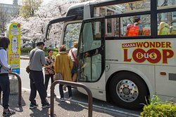 Board the bus at any of the 14 bus stops and choose an area in the city to explore!