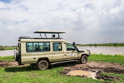 Kenya Expresso Tours and Safaris