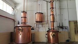 Distillery from 1974