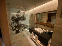 Very nice bathroom and shower