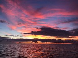 Most places close before sunset....with Banyan Charters we know how beautiful the sunsets our and want to share that with our guest while they visit Marco Island and south west Florida.