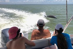 Dolphin tours just seem to bring everybody in the family together.  With our private charters you get to enjoy these magical moments with those that you love.