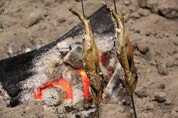 囲炉裏の岩魚