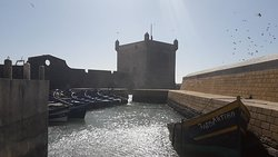 From Marrakech to Essaouira Private Day Tour