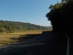 西湖自行車道一景