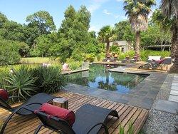 Pool and backside Luxury Garden Suites