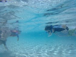 Kids snorkelling in the natural pool