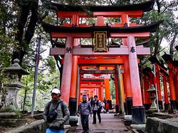 Easily accessible and a wonderful shrine experience!