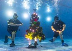 """Подводный Новый Год в бассейне под открытым небом """"ЧАЙКА"""""""