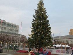Christmas Tree 2019, Civic Center, San Francisco, CA
