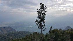 Pagoda Point...