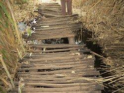 Bridge on hiking trail over stream