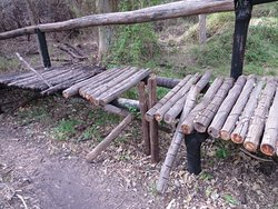 Wooden bridge on hiking trail