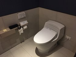 Guest toilet with Japanese bidet