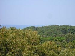 Смотрим с балкона чуть влево - видим Ионическое море, на нём - идущий из Киллини на остров Закинтас (Закинф) паром.