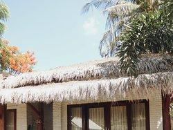 Tempat saya dan suami bermalam di gili. Tapi ini bungalow yang difasilitasi oleh rekan kerja suami. Tempat nya nyaman, cm krn air dekat laut jd sedikit asin.