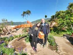 Hmong garden