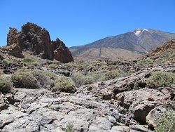 Dykes, basaltes des éruptions du Teide et du Pico Viejo