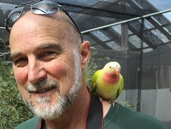 My husband with a friendly visitor on his shoulder!