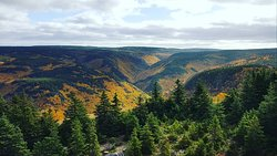 Cape Breton Highlands, a view from the top.