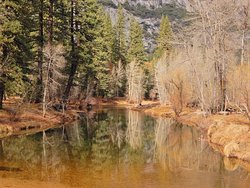 Merced River Reflection.  December 2019.  Nikon Coolpix A900 with 35x zoom.