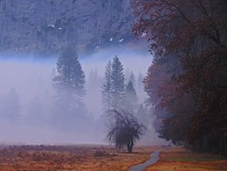 Yosemite Valley.  Christmas Eve morning, 2019..  Nikon Coolpix A900 with 35x zoom.