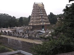 View of temple from Fort wall