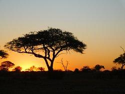 Sunset over Hwange