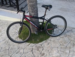 Bicycles available on site to borrow