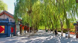 Weeping Willow Trees at entrance to Dafo Temple.