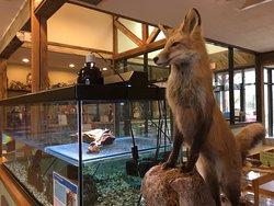 Croydon Creek Nature Center