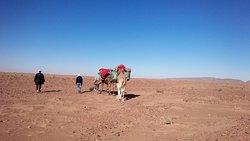 同じ砂漠でも、岩の転がるところや滑らかなところなど、実に変化に富んでいました。小瓶に砂を入れて持ち帰りました。