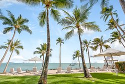 Relax under the palm trees with ocean views of the Coral Sea.