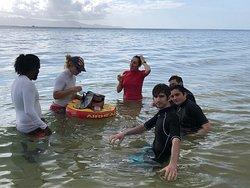 Au cœur de la mangrove en step paddle et kayak