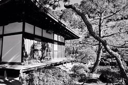 Best view from temple high garden