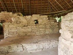 """Edificio """"Manitas"""" y una iguana."""