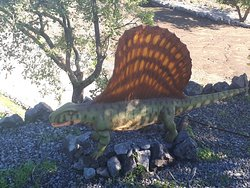 Dimetrodonte-dinosauri zafferana